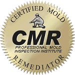 Certified mold Inspection Certified Mold Remediation Raleigh