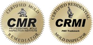 Mold Testing & Mold Inspections in Cary NC 1